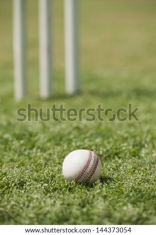 Close-up of a cricket ball on grass