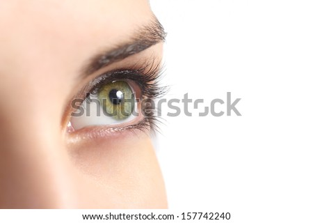 Close up of a green woman eye isolated on a white background              - stock photo