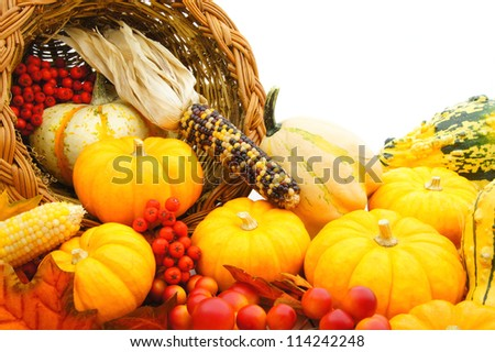 Close up of a harvest or Thanksgiving cornucopia of autumn vegetables - stock photo