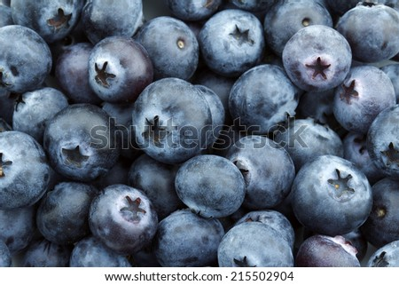 close up of a heap of blueberries - stock photo