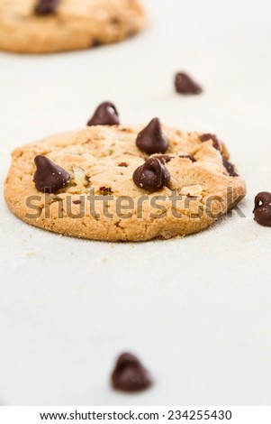close up of a home made chocolate chip cookie made with organic and healthy ingredients