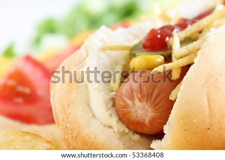 Close up of a Hot Dog with vegetables - stock photo