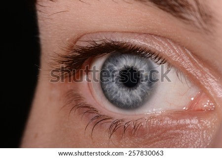 Close Up Of A Man Eyes, macro