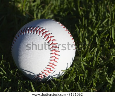 Close up of a new baseball sitting in grass