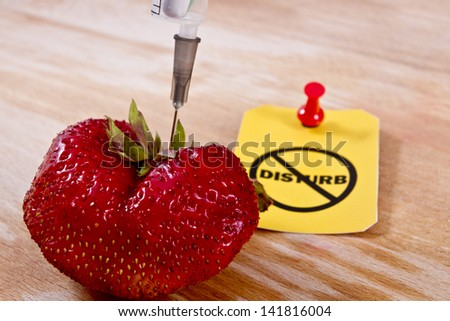 "Close up of a red ripe strawberry with syringe needle inside of it and yellow ""Do not disturb label"" with a thumbtack behind on a wooden background. Stop GMO concept/Stop GMO engineering - stock photo"