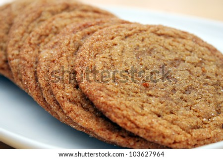 Close Up of a Row of Brown Sugar Cookies - stock photo
