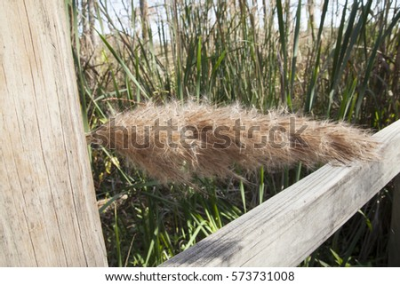 grass lake jewish single men 100% free online dating in grass lake 1,500,000 daily active members.