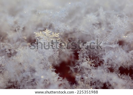 Close up of a snowflake between other snowflakes. - stock photo