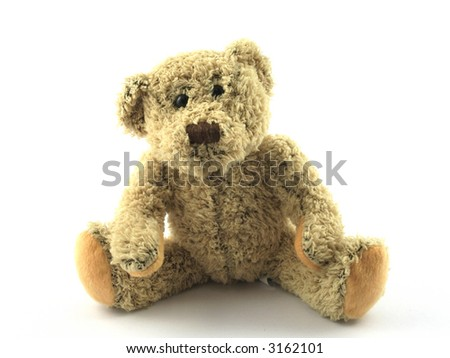 Close up of a teddy looking at the camera