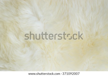 Close up of a white dyed sheepskin rug as a background.