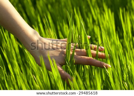 close up of a woman's hand touching the grass, 'feeling nature' - stock photo