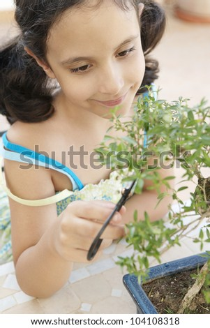 Close up of a young girl concentrated in trimming a bonsai tree into shape.