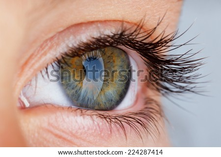 close up of an eye - stock photo