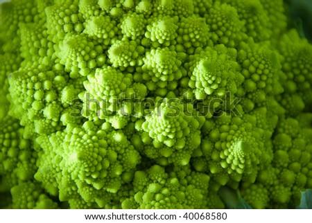 Close-up of an italian cauliflower named romanesco. - stock photo