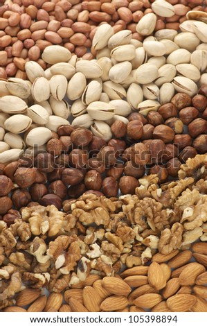 Close-up of assorted nuts in rows. - stock photo