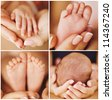 Close-up of baby's hands and feet collage - stock photo