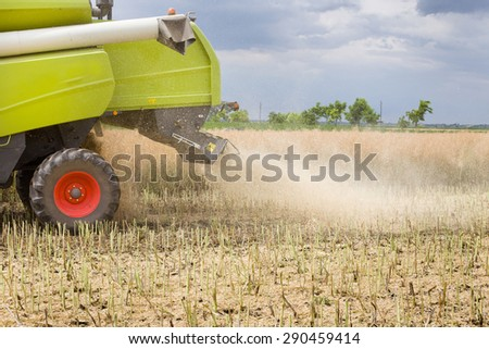 Close up of back part of combine harvester cutting rapeseed plants in the field - stock photo