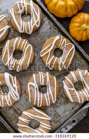 Close up of baking pan filled with homemade baked cinnamon pumpkin donuts with apple cider drizzle and small pumpkins on the side - stock photo