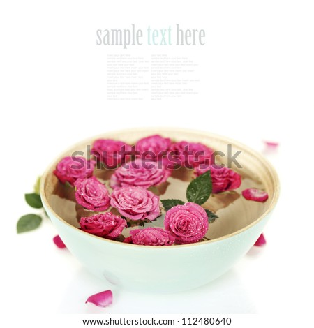 Close up of Beautiful pink roses in bowl over white (with easy removable sample text) - stock photo