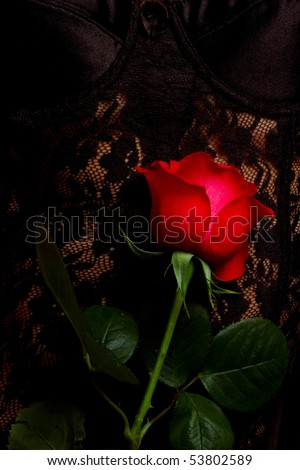 close up of beautiful woman in black satin and lace corset holding red rose - stock photo