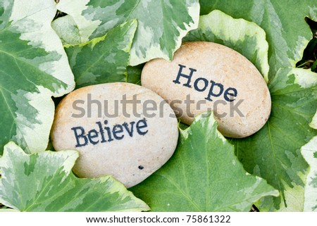close up of 'believe' and 'hope' stones on ivy leaf background