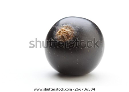 Close up of black currants - stock photo