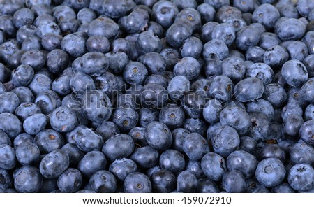 close-up of blueberries with water drops