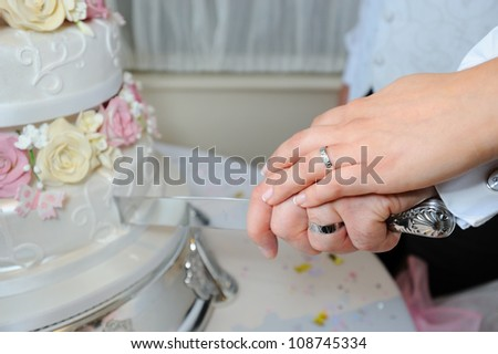 Close up of bride and groom cutting wedding cake
