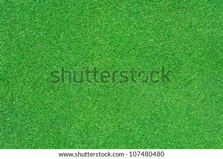 close up of bright green grass texture