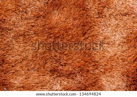 Close up of Brown fur texture background - stock photo