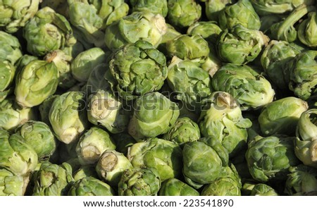 Close up of Brussels sprouts at a farmers market in Belgium. Selective focus at middle.