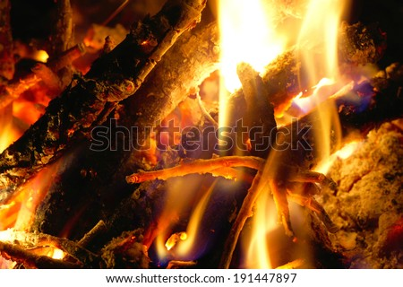 Close-up of burning wood.