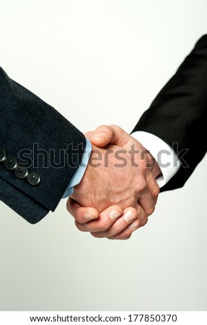Close-up of business people shaking hands - stock photo