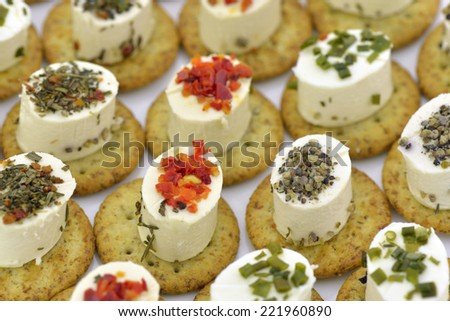 Close-up of cheese appetizers decorated with spices and vegetable - stock photo