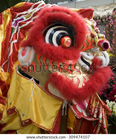 Close-up of chinese dragon head used for celebrating Chinese New Year