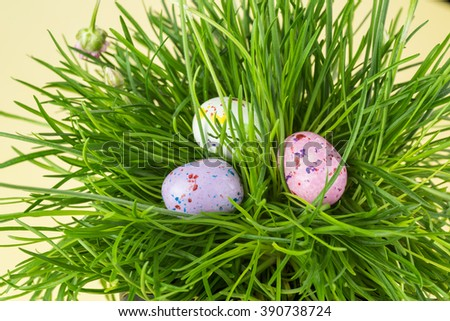 Close up of chocolate candy eggs on a grass prepared for easter hunt.