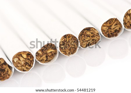 Close-up of cigarettes in row on white background.