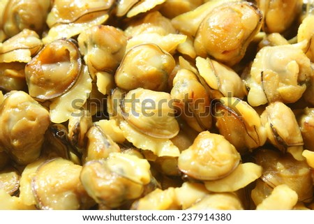Close up of Clam meat.Shallow depth of field photograph. - stock photo