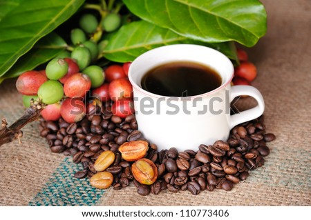 Close up of coffee and fresh raw coffee beans with leaf on texture background, selective focus.