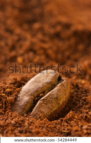Close-up of coffee bean in ground coffee. Selective focus on foreground. - stock photo