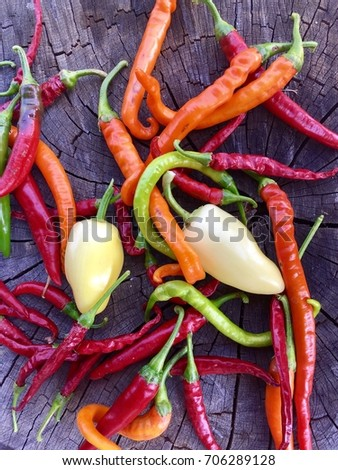 close up of coloured peppers on a wooden log