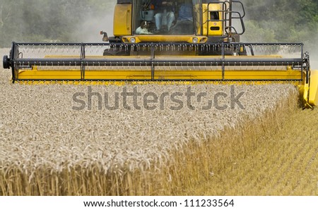 Close up of Combine harvester at work cutting cereal - stock photo