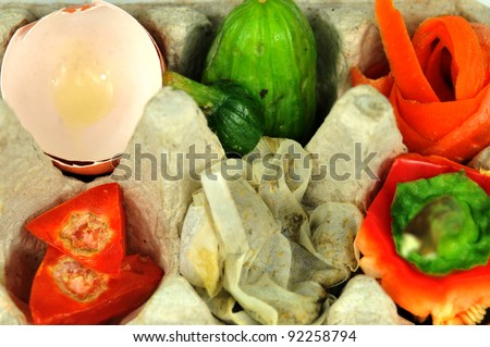 Close up of compost in egg carton - stock photo