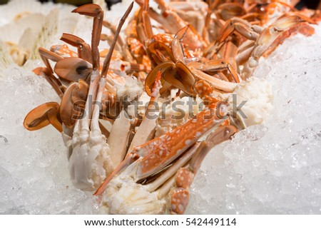 close up of cooked blue crab in buffet line