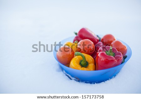 Close-up of Deep plate with delicious vegetables: peppers, eggplant and tomatoes on white snow - stock photo