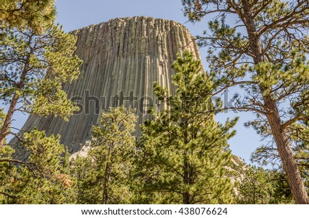 Close-up of Devils Tower behind pine trees at Devils Tower National Monument in Wyoming - stock photo