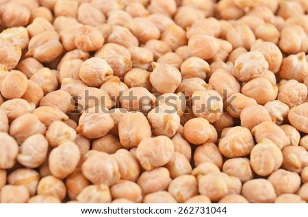 Close up of dried chickpea as background - stock photo