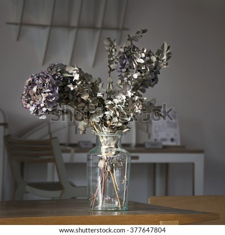 Close up of dry colorful hydrangea flowers in a vase in interior - stock photo