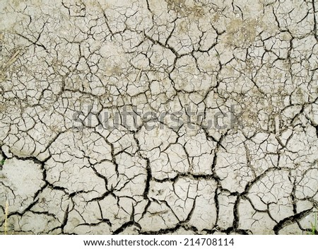 close up of dry cracked ground for background   - stock photo