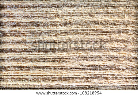 Close-up of dusty end of the book. Space for text. Shallow DOF. - stock photo